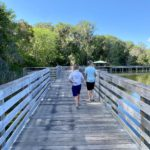 boardwalk, nature trail, nature, florida, mount dora